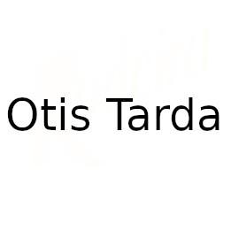 Otis Tarda
